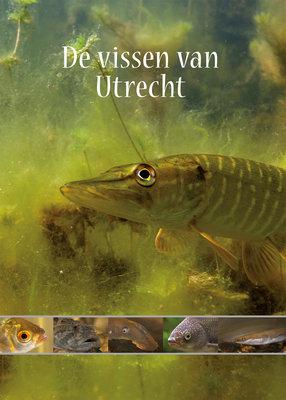 De vissen van Utrecht