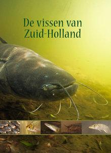 De vissen van Zuid-Holland
